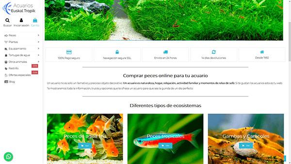 euskaltropick disño web melilla wordpress